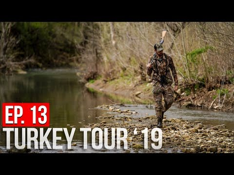 WE CAUGHT A POACHER! - Arkansas Turkey Hunting