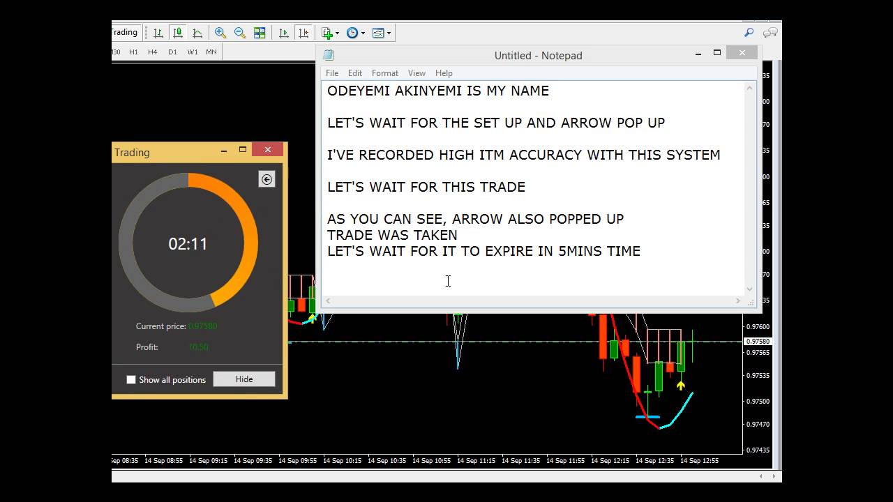 Sonic r system binary options