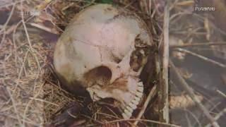 Mördern auf der Spur - Cold Cases