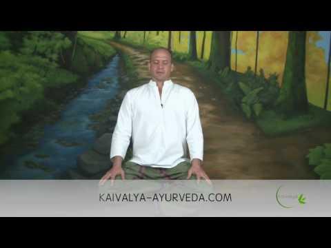 Pranayama and guided meditation