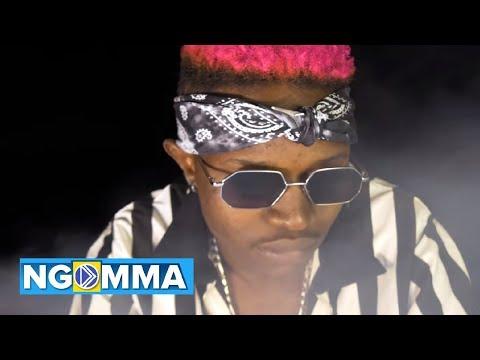 ndume-&-mr.seed---pepeta-(official-music-video)