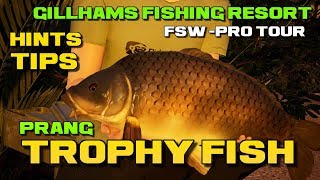 Fishing Sim World Pro Tour Trophy Fish Prang Gillhams Fishing Resort Giant Carp Pack DLC