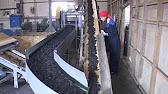 Оборудование по переработке шин - YouTube