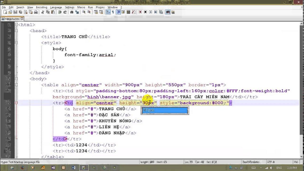 Lập trình Web (HTML,CSS,JS,PHP) - Phần 2 #1
