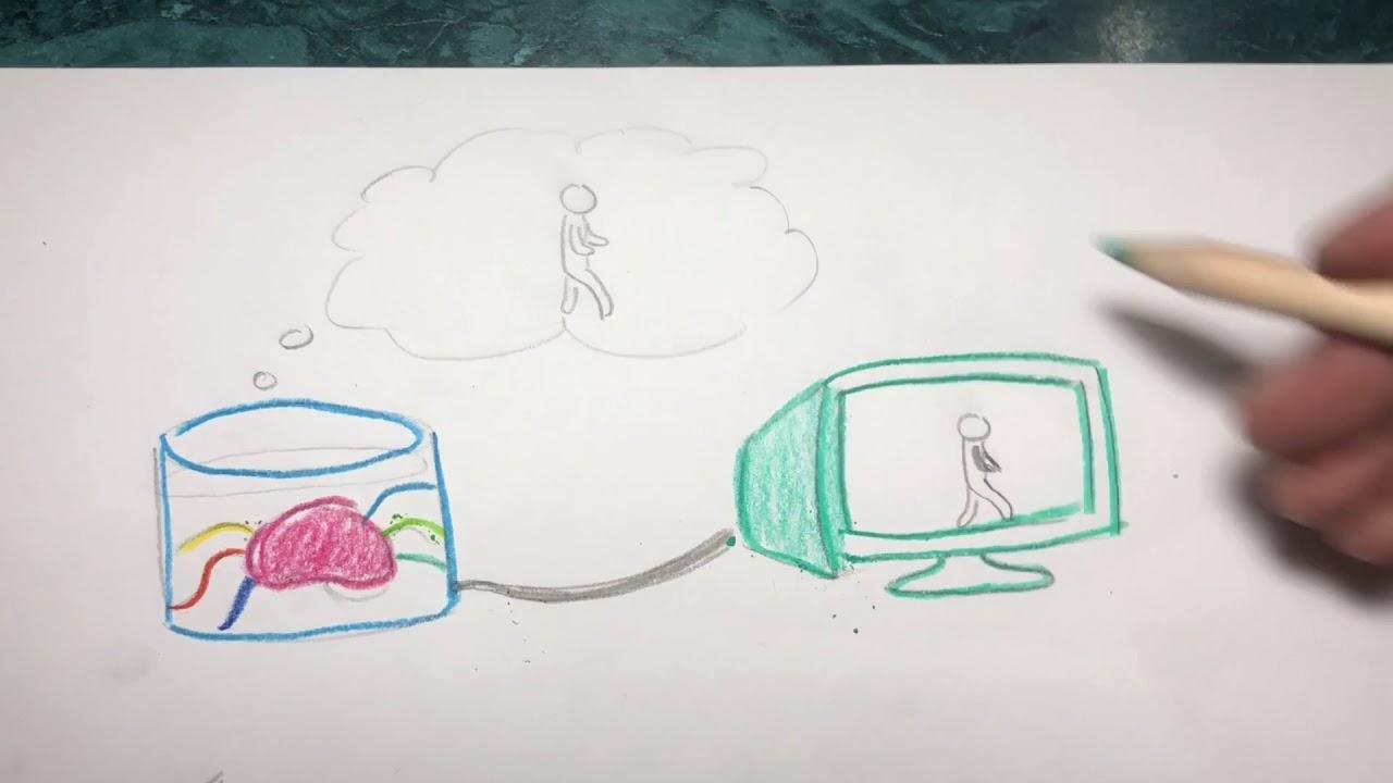 Chalmers brain in a vat essay