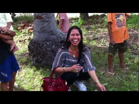 Philippine Coconut Tree Climber