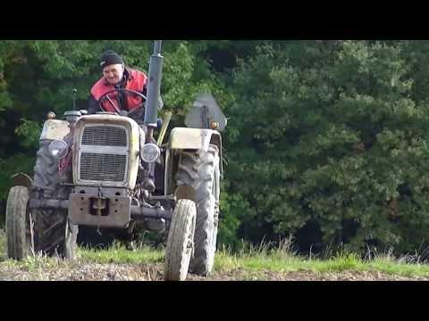 Agriculture en Pologne