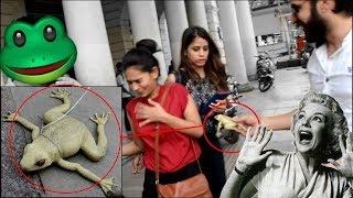 FAKE SNAKE / FAKE FROG prank | PRANKS IN INDIA | TIA