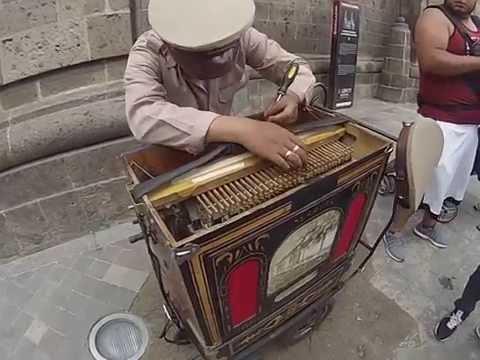 Organillero en Guadalajara Jalisco