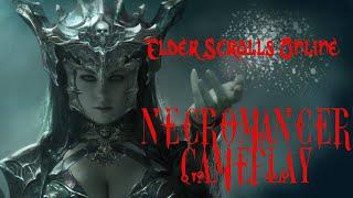 Elder Scrolls Online ~Necromancer game play 2~
