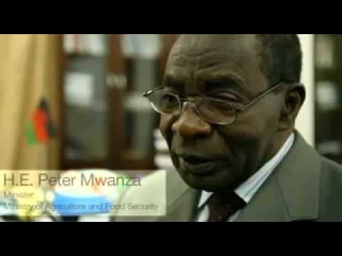 Pricing and Procurement in Africa - Between free market and full regulation - Preview
