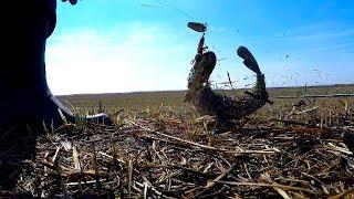 Ловля щуки Весенняя рыбалка в ериках Астраханской области