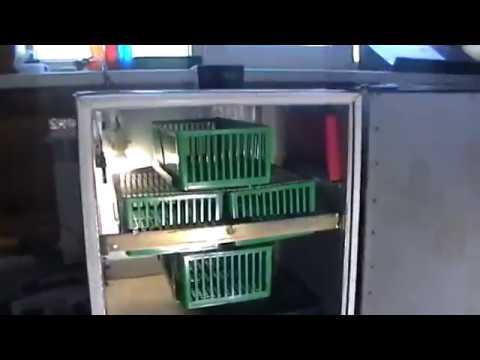 Вопрос: Какие плюсы и минусы у инкубатора для яиц Поседа М-33?