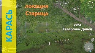 Русская рыбалка 4 река Северский Донец Карась под деревом