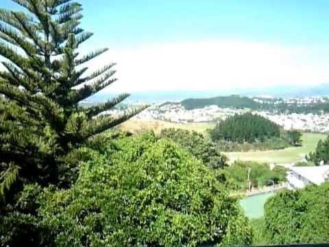Property to rent in Havelock Street, Mornington, Wellington