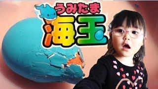 海玉(うみたま)たまごを水につけると、中からお魚がうまれるよ【かなちゃん4歳❀なみちゃん0歳】 thumbnail