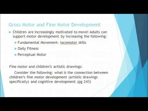 Gross Motor Skill Development and Delays in early childhood