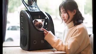 10 Переноска для животных с Алиэкспресс AliExpress bag for cat and dog Лучшие товары для собак