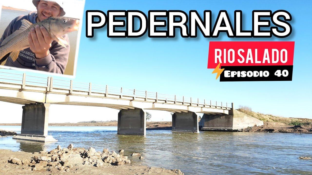Download PESCA En el RIO SALADO Por Pedernales // Puente , rio , Naturaleza y muchas Carpas / Epi40 MJ-PESCA