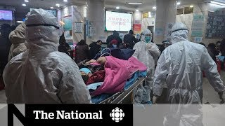 Coronavirus in China: The fight against the outbreak