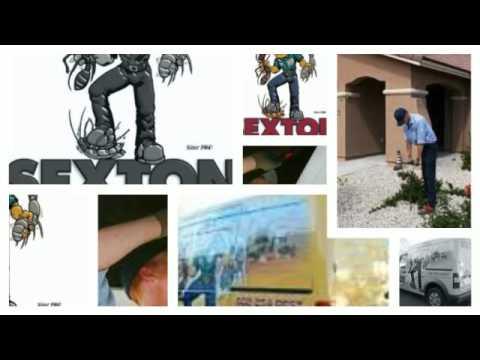 Pest Control Chandler AZ | Sexton Pest Control - (602) 942-3653