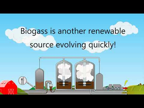 The Renewable Energy Sector