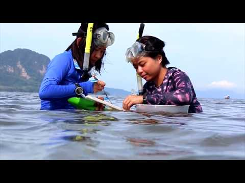 Sustainable Development Studies in Thailand