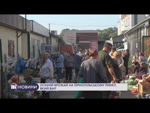 Телеканал ІНТБ: Осінній врожай на тернопільському ринку, який він?