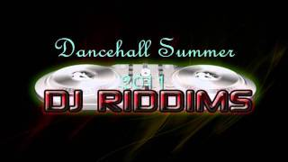 Download Dancehall Summer 2011 - Official Mix - WITH TRACKLIST! MP3 song and Music Video