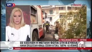 ΒΙΝΤΕΟ από την μεγάλη πυρκαγιά που μαίνεται στην Εύβοια