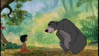 Baloo - Il en faut peu pour être heureux thumbnail