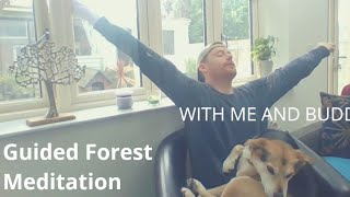 Guided Forest meditation with me & Buddy