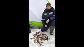 Зимняя рыбалка на Рузском вдхр Рыбалка в палатке зимой Рузское вдхр