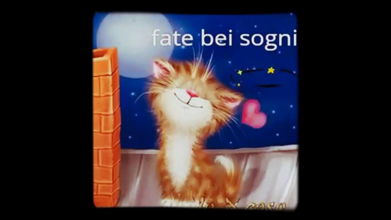 Amato La buonanotte del gattino - YouTube SS35