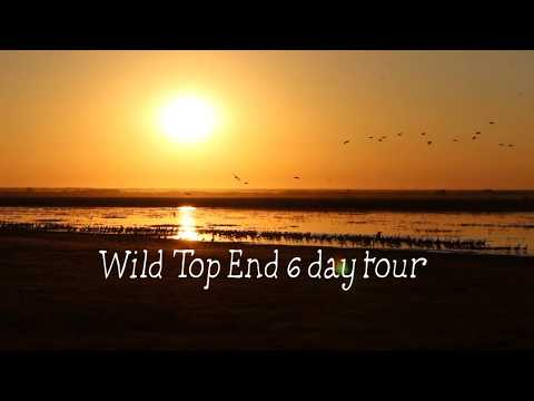 A wildlife safari in Australia