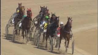 Vidéo de la course PMU PREMI HARAKIRI