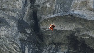Valley Flight – Wingsuit Flying in 4K