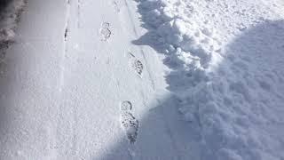 8.  Fodspor i sneen. Varighed: 19sek