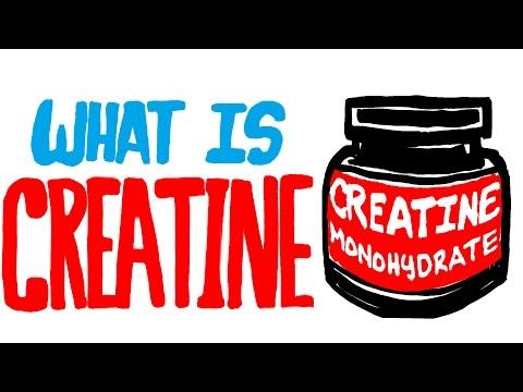 How does Creatine work?   Doovi