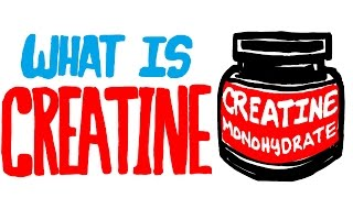 What is Creatine? Should You Be Taking This Supplement?