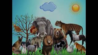 Звуки животных для малышей. Учим животных. Животные для самых маленьких.