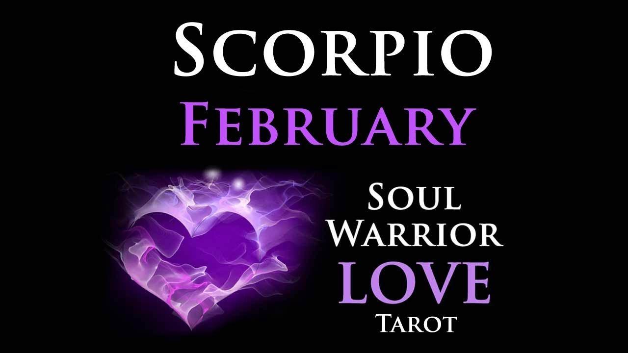 scorpio february love tarot