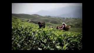New Nepali Song 2013 - Ko Hola Tyo Ma Sanga Aakha Judhaune