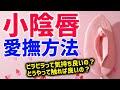 前立腺快感トレーニング → ドライオーガズム (1) - YouTube
