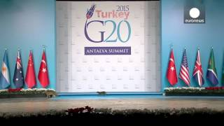 Cats invade G20 summit stage in feline security breach