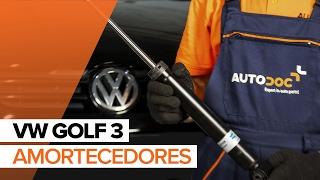 Assista ao nosso guia em vídeo sobre solução de problemas Amortecedor de suspensão VW