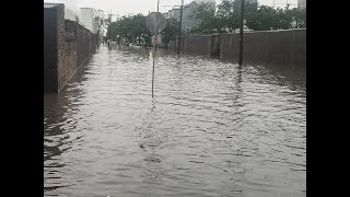 #new orleans flooding today