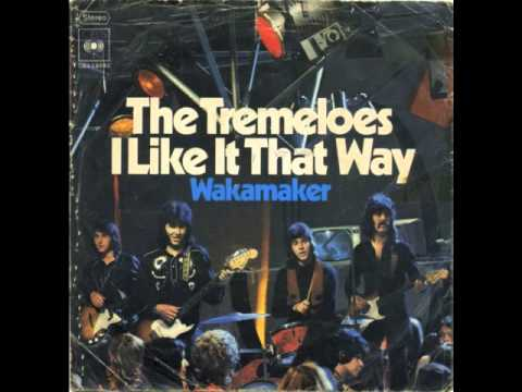 The Tremeloes - I Like It That Way