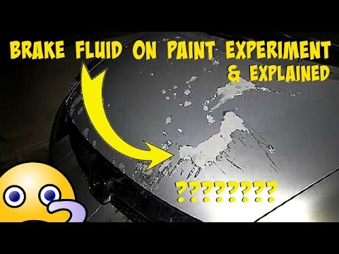 Brake Fluid On Paint Experiment and Explained