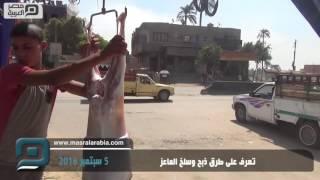 بالفيديو| قبل عيد الاضحي 2016.. تعرف على طريقة ذبح الأضحية